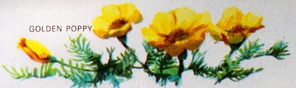 1974_f9.jpg