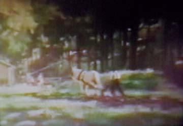 1971_02video.jpg
