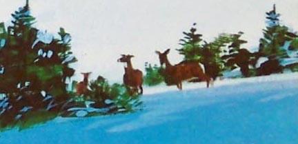 1971_cover_deer.jpg