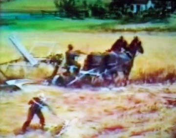 1977_08video.jpg